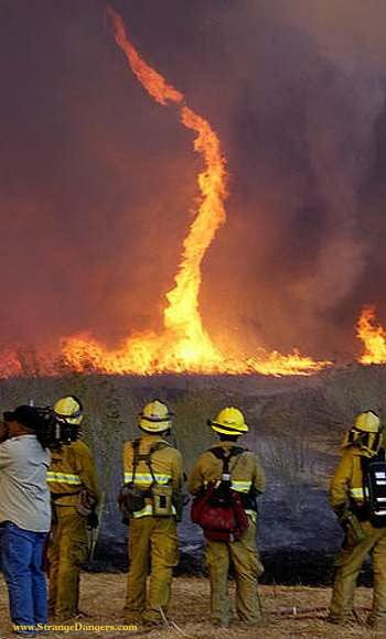Fire Tornados or Fire Whirls are rare phenomenon. They from in certain conditions and can cause multiple wild fires which can themselves keep on with the fire devastation.