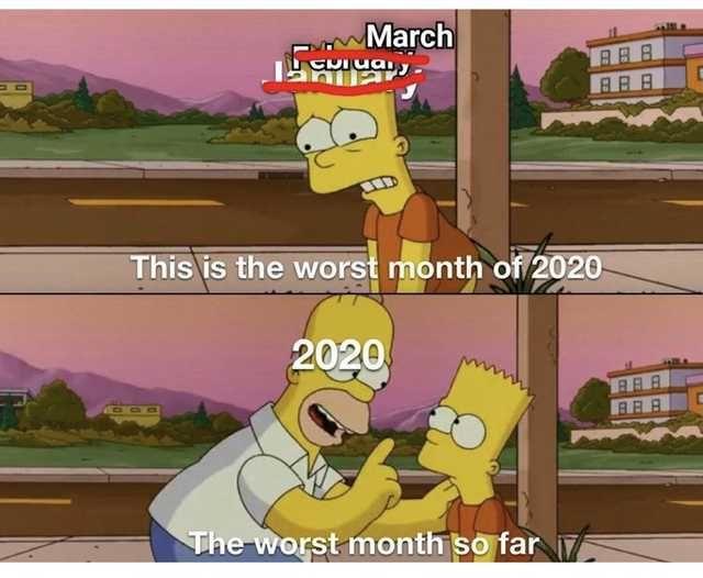 Imgur Com Really Funny Memes Stupid Memes Stupid Funny Memes