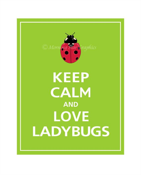 Ladybug Quotes, Prints 8X10, Ladybugs Families, Inspirational Quotes Ladybugs, Lady'S Bugs, Keep Calm And Ladybug, Ladybugs Calm, Lady Bugs, Ladybugs Prints