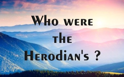 Who Were The Herodian's? ~ Have you heard about the Herodian's? Who were they, and why is it important to know about them? [...]  Read more: http://www.whatchristianswanttoknow.com/who-were-the-herodians/#ixzz4c0UvUlQi