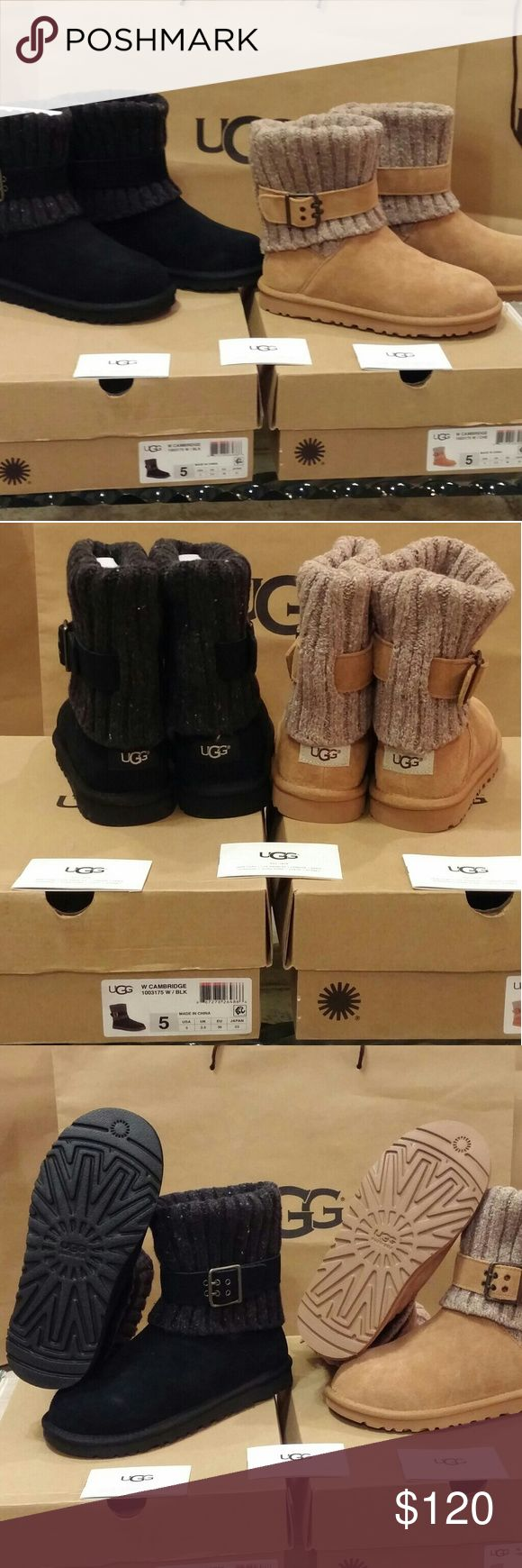 ????ORIGINAL UGG???? Cambridge ??Brand New?? Luxurious and comfortable low cut boot with a sleek buckle strap accentuates the fold-over knit cut of a a short boot lined with plush UGGpure (TM) wool, a textile made entirely crom wool but engineered to feel and wear like a genuine shearling.  Available in Chestnut.or Black. We normally wear 1 size bigger due to the thick sheep skin lining. ** NOT included with other offers or discounts. (1003175045-170) UGG Shoes Winter & Rain Boots
