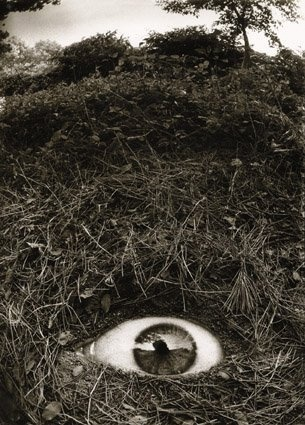 Made by: Joan Fontcuberta  - (Eye in the ground)