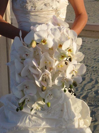 White Orchid Wedding Dress