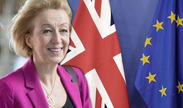 Out of EU by the SPRING: Andrea Leadsom pledges Britain would be on fast-track to Brexit