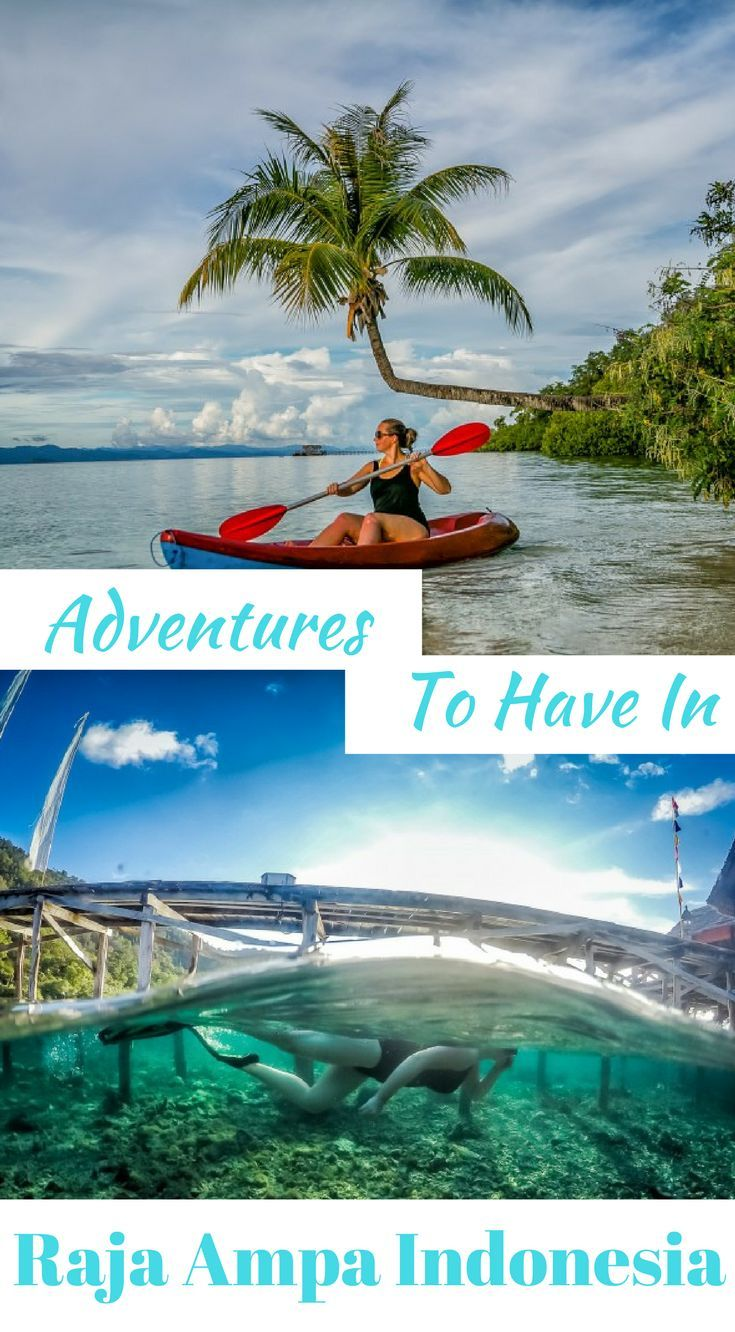 Adventures to have in Raja Ampa Indonesia. Get ready for a real treat in this part of the World. Click to read Adventures to have in Raja Ampa Indonesia http://www.divergenttravelers.com/raja-ampat-islands-indonesia/