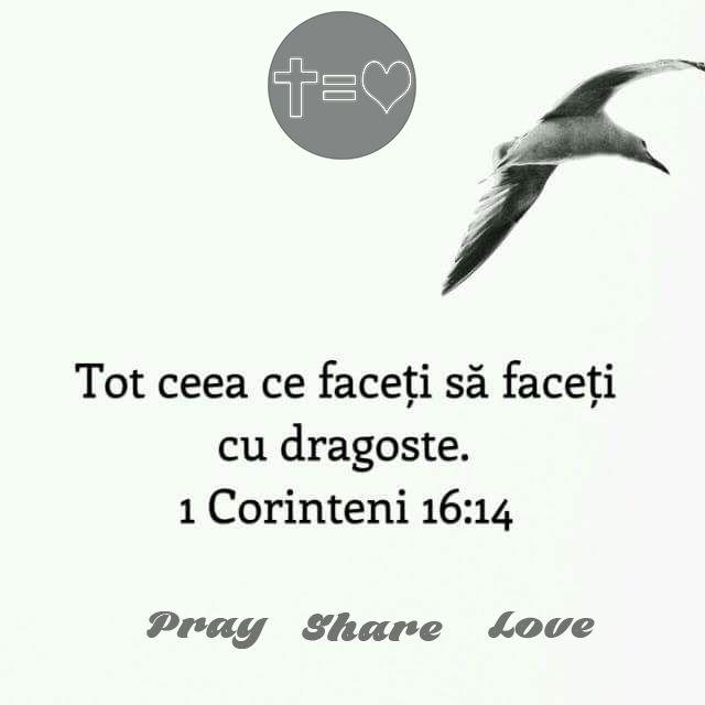 https://www.facebook.com/praysharelove/ Lucrurile făcute din obligație sau din altă motivație decât dragostea nu au nicio valoare. #dragoste #bucurie #inimă #mulțumitoare