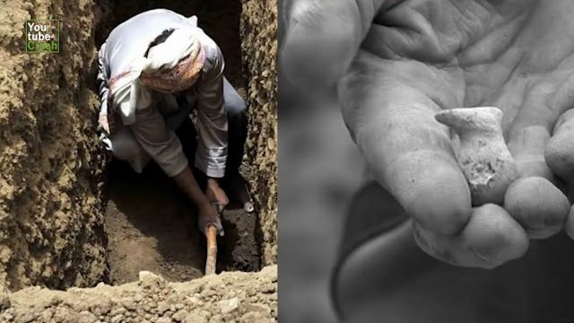 Video Ilmiah Ini Tunjukkan Keajaiban Tulang Ekor Sabda Nabi Muhammad 100% Benar http://news.beritaislamterbaru.org/2017/06/video-ilmiah-ini-tunjukkan-keajaiban.html