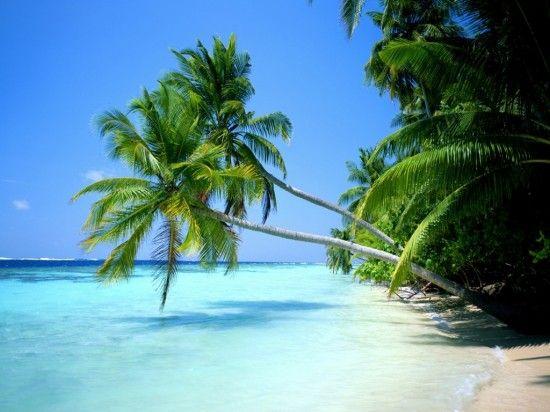 Playas paradisíacas como estas te esperan en www.1000tentaciones.com