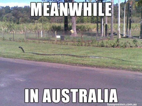 Love this country #brauntransport #meanwhileinaustralia
