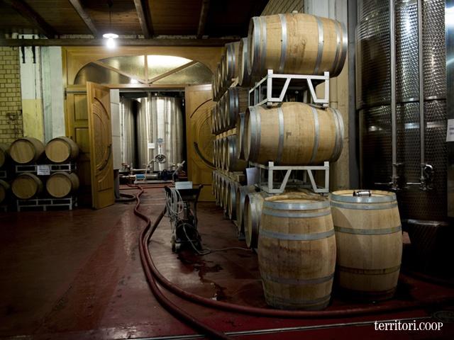I vini di maggiore corpo e struttura riposano in piccole o grandi botti di legno di rovere francese.