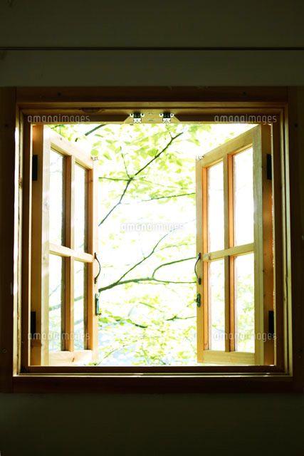 山小屋の窓と新緑 (c)kiyu kobayashi/orion