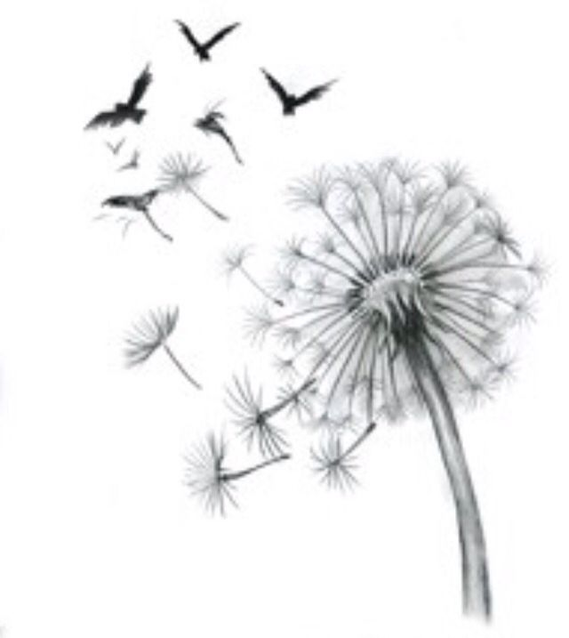 best 25 dandelion tattoo foot ideas on pinterest dandelion tattoos dandelion tattoo small. Black Bedroom Furniture Sets. Home Design Ideas