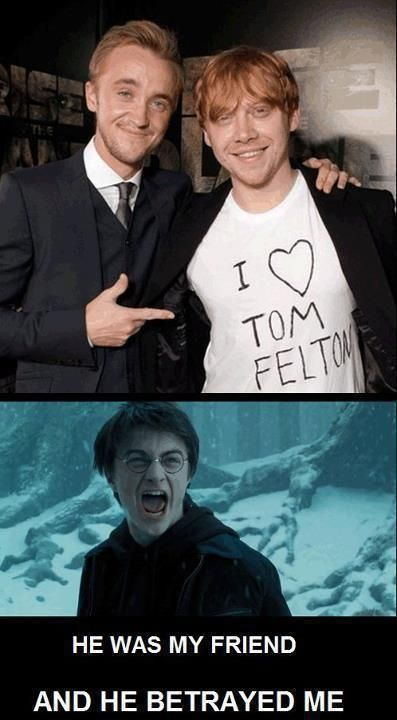 Tom Felton Draco Malfoy Ron Weasley Rupert Grint Harry Potter Daniel Radcliffe humor funny he betrayed me friends