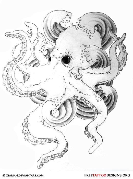 Best 20 Octopus design ideas on Pinterest Octopus Tentacle