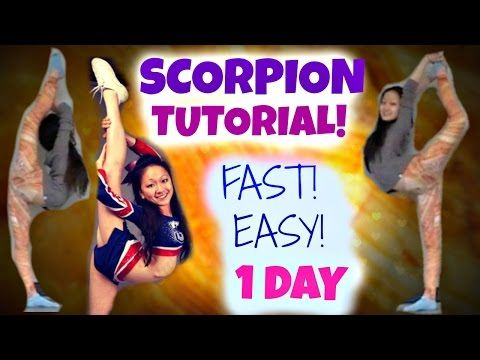 How to Learn a SCORPION - in ONE DAY! - YouTube