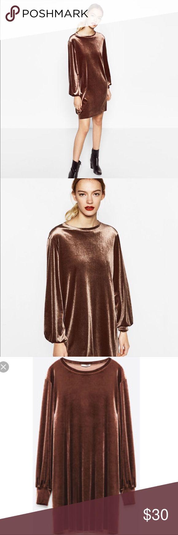 Zara Taupe Velvet Shirt Dress Straight velvet dress with long sleeves Zara Dresses Mini