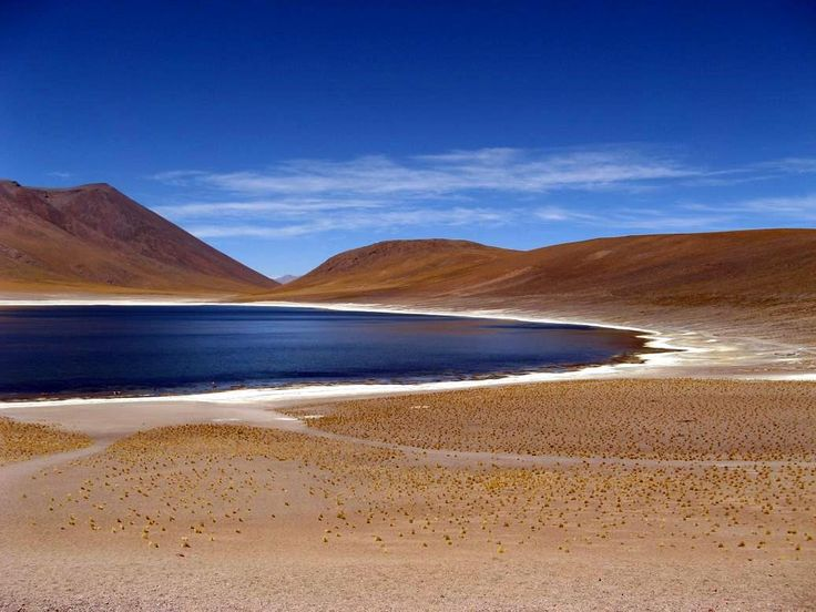 Altiplanic Lagoons (Lagunas Altiplanicas), San Pedro de Atacama, Chile Altiplanic lagoons: If the sight doesn't take your breath away by itself, the altitude will as it is at 4.200m altitude.