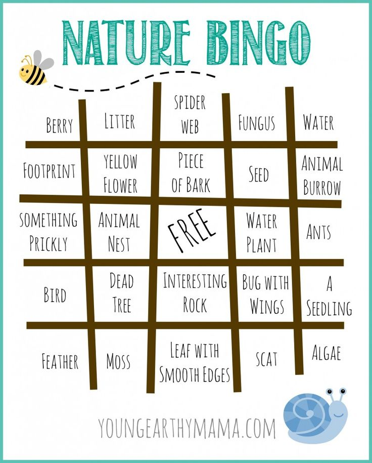 Free Nature Bingo Printable. Outdoor Bingo Printable. Camping Bingo. Youngearthymama.com