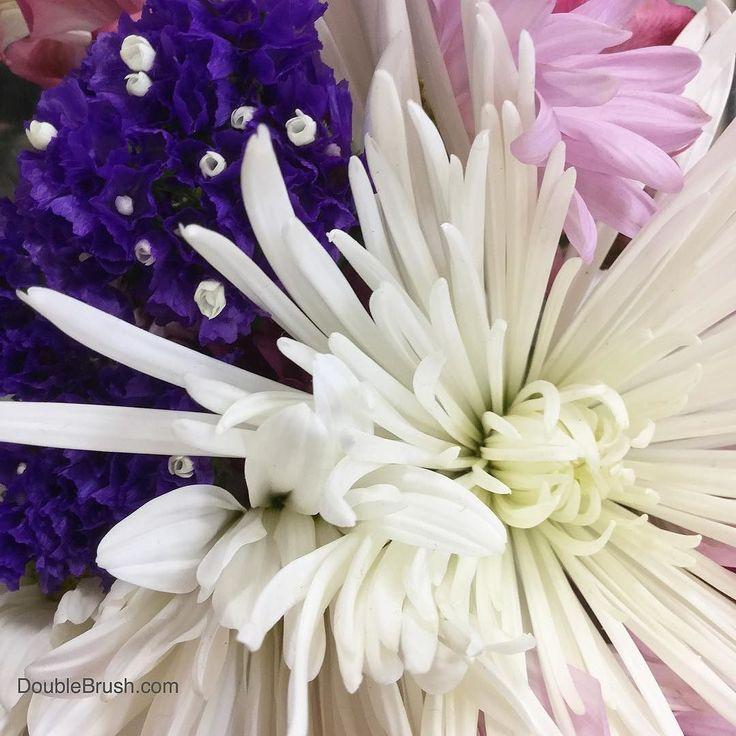 Wishing wonderful warm Wednesday weather to all!  . . . #wednesdaywisdom #wednesdays #wednesdayvibes #humpday #humpwednesday #flowerlove #flowery #flowergram #flowerlife #flowergift #flowerstagram #flowerbouquet #flower_daily #flowerstalking #flowerlovers #flowerphotography  #flowerofinstagram #flowersturk  #flowerstarz #flowerpower #g #pursuepretty #flashesofdelight #thehappynow #darlingweekend #darlingmovement #myunicornlife #prettyflowers #beautifulflowers