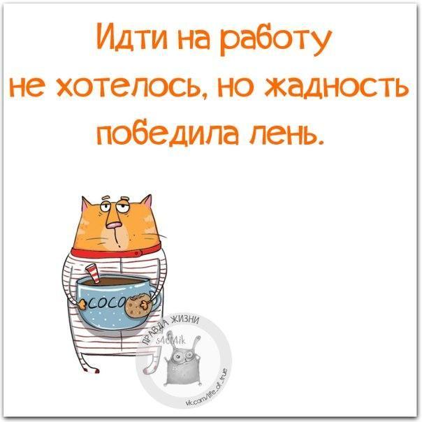 tXPfATBJB0I.jpg (604×604)