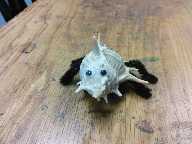 Spiky spider shell creature