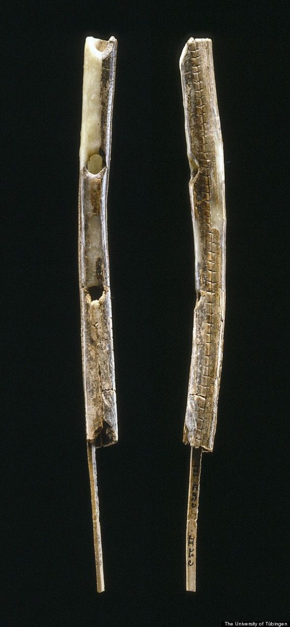 Bone Flute Means Musical Instruments Date Back 40,000 Years, Scientists Say