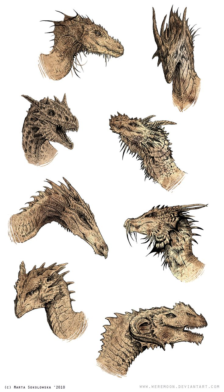 dragon heads by *weremoon on deviantART