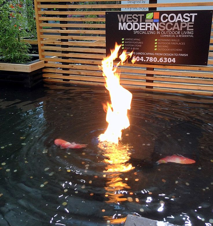 Fire And Water   Gas Fire In Outdoor Water Feature
