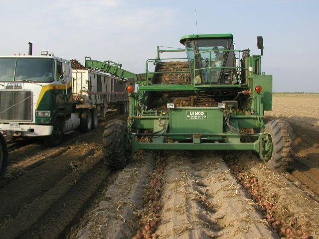 potato harvesting equipment - Google Search