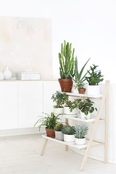 les 25 meilleures id es de la cat gorie stands de plantes d 39 int rieur sur pinterest pots de. Black Bedroom Furniture Sets. Home Design Ideas