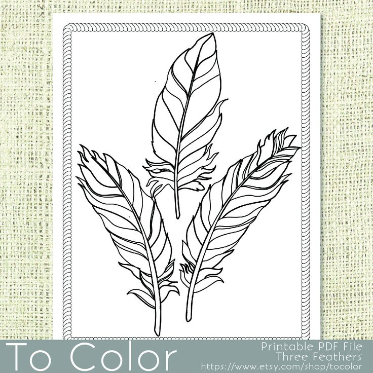 101 best coloring pages images on pinterest coloring for Coloring pages with lots of detail