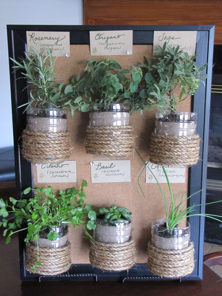 Hanging herb garden i made with recycled materials pin for Garden made of waste material