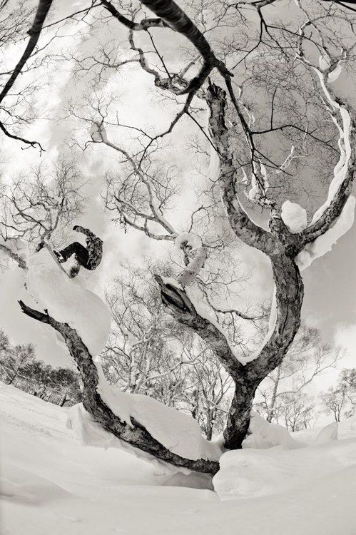 .:: Snowboard ::. #backcountry #freeride #snowboarding