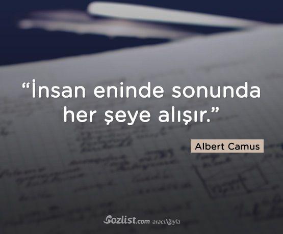 • Albert Camus •