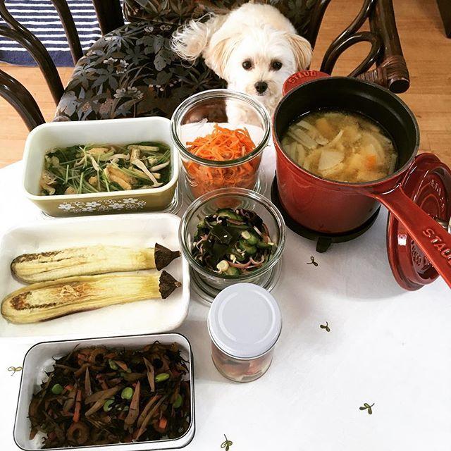 休み明けのつくりおき❣️ #水菜の煮浸し  #焼きなす  #ひじきの煮物  #にんじんサラダ  #きゅうりの酢の物  #みょうがの甘酢漬け  #具沢山味噌汁  とりあえず地味〜な野菜のつくりおき☺️ ホント地味だなぁ…😅 #マルプー #マルプーもも🍑 #mix犬 #dog #愛犬 #犬のいる生活 #犬のいる暮らし #犬との暮らし #つくりおき #常備菜 #野菜のおかず #ストウブ #staub #野田琺瑯 #weck #オールドパイレックス