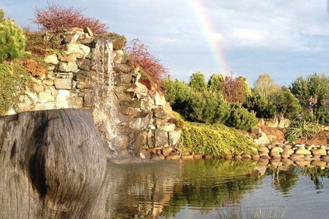 Jakie rośliny wybrać do ogrodu? Ogrodowe aranżacje w różnych stylach i kolorach http://www.liderbudowlany.pl/artykul/513/jakie-rosliny-wybrac-do-ogrodu
