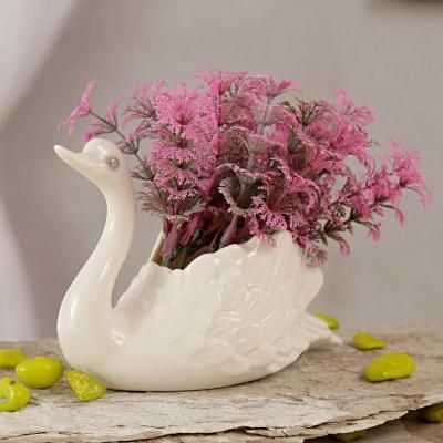 Indoor plants - Buy Indoor plants Online | Gift Delivery in India, USA, UK