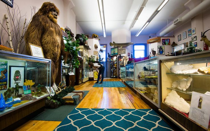 Weirdest Roadside Attractions: Maine: International Cryptozoology Museum