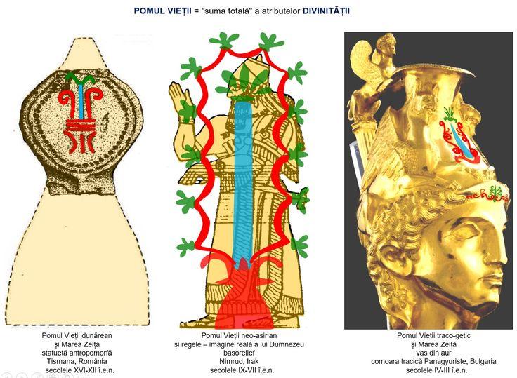 """Asocierea """"cosubstanțială"""" dintre Pomul Vieții și Marea Zeiță/Divinitate era cunoscută, încă din epoca bronzului, în zona dunăreană."""