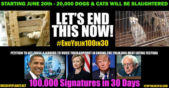 Demand President Obama, Hillary Clinton, Bernie Sanders and Donald Trump address and protest the Yulin, China Dog Meat eating Festival