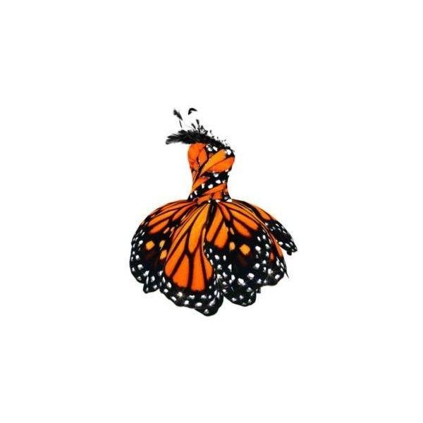 LULY YANG Monarch Butterfly Dress