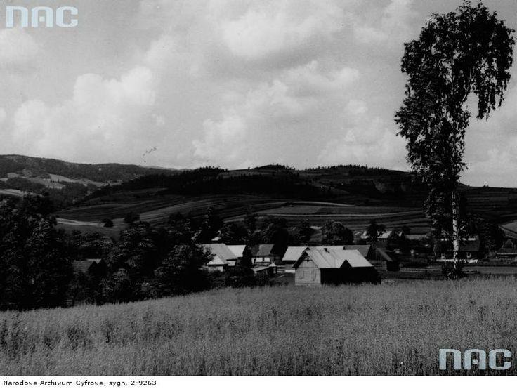 Krajobraz rolniczy okolic Krynicy Zdroju. Na pierwszym planie pole, na drugim wieś.