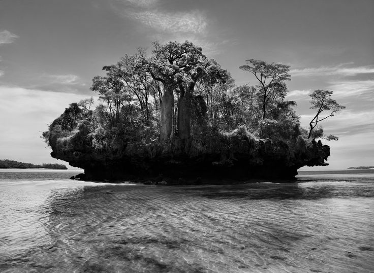 Sebastião Salgado, In Love With My Planet | Madagascar, 2010 Baobab trees on a mushroom island in the Bay of Moramba.