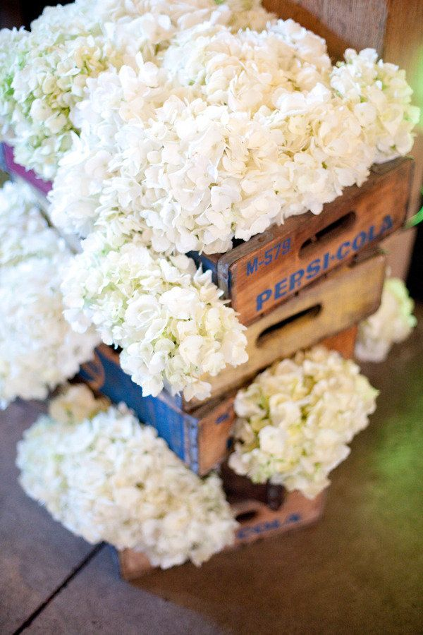 White Hydrangea Décor coke crates this would be great on FOOD TABLE
