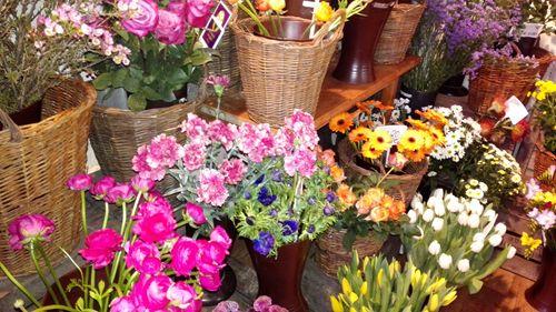 http://www.tarisa.de/highlights-of-the-week-fotos-blumenladen/  #blumen #blumenladen #deko
