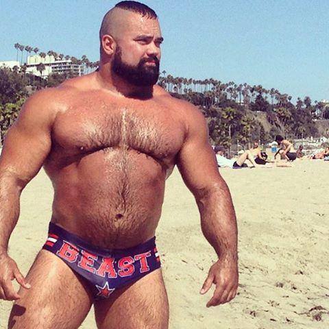 Sex Muscular bear