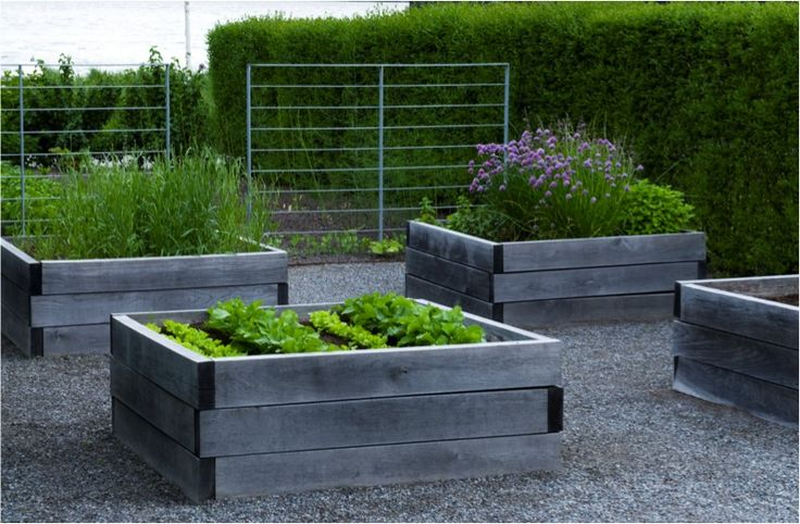 timber veggie boxes