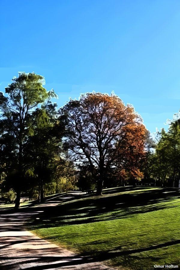 St. Hanshaugen park in May 1, 2014.