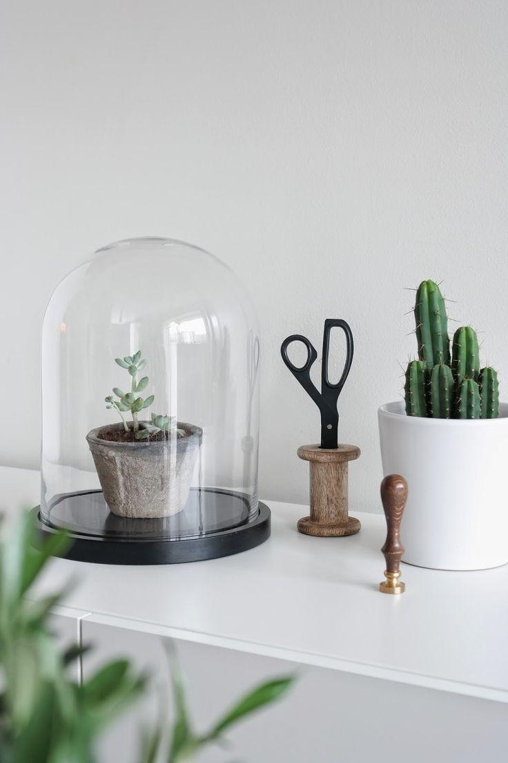 Sort/hvitt interiør og grønn glede; Glasskuppel Åhléns, Hay saks, Kaktus Ikea, terracotta potte, Oliventre Plantasjen