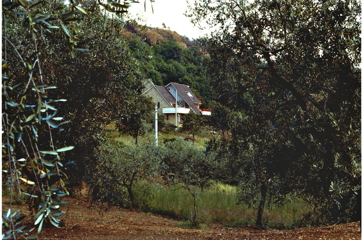 The villa from a distance - Villa Tina, for rent in Tuscany